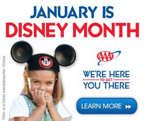 AAA-Disney-Banner-Ad_300x250 1-9-14