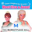 Meet Elsa and Anna!