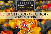 Dutch Connection at George Eastman Museum