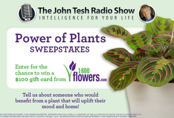 WARM 101.3 Mothers Day Power of Plants Sweepstakes