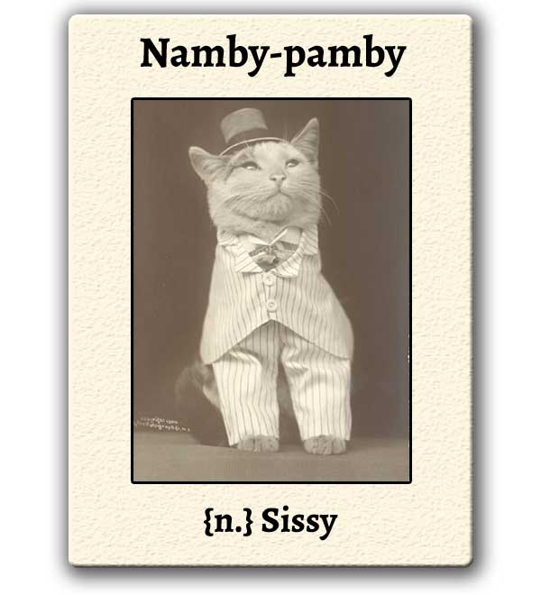 Word For The Weekend: NAMBY-PAMBY